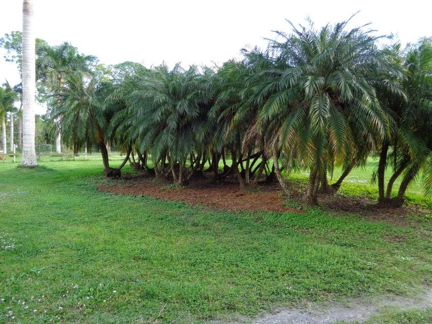 11920 52nd Road Royal Palm Beach, FL 33411 photo 27