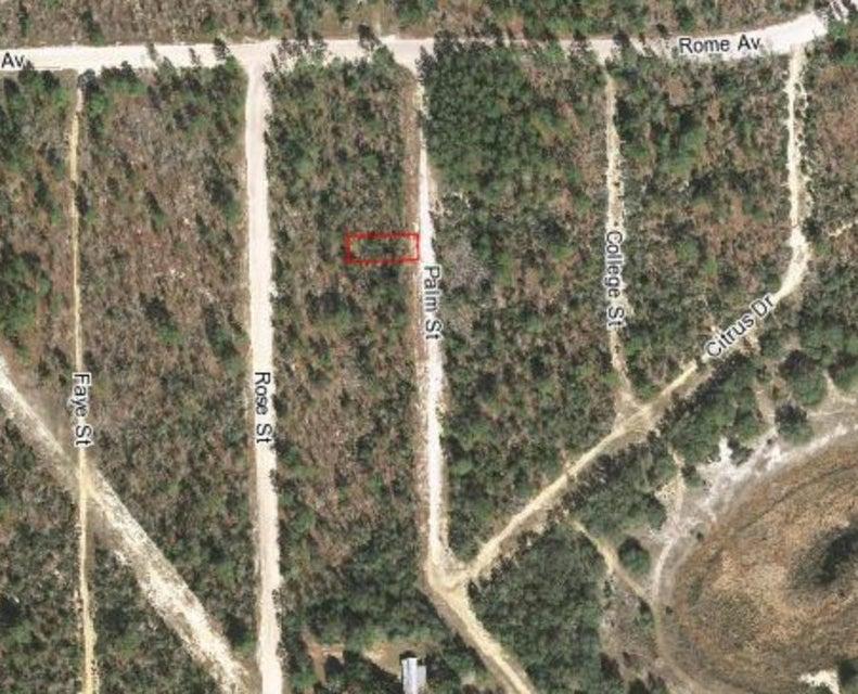 Land for Sale at 445 Palm Street 445 Palm Street Interlachen, Florida 32148 United States