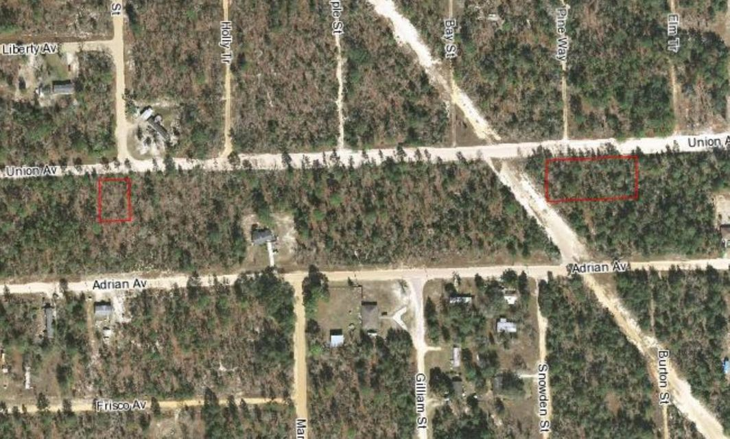 Land for Sale at 119 Union Avenue 119 Union Avenue Interlachen, Florida 32148 United States