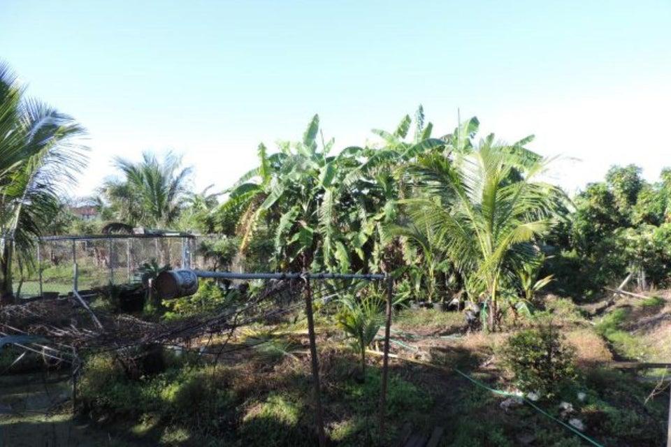 Terreno por un Venta en 4860 SW 192 Terrace 4860 SW 192 Terrace Southwest Ranches, Florida 33332 Estados Unidos