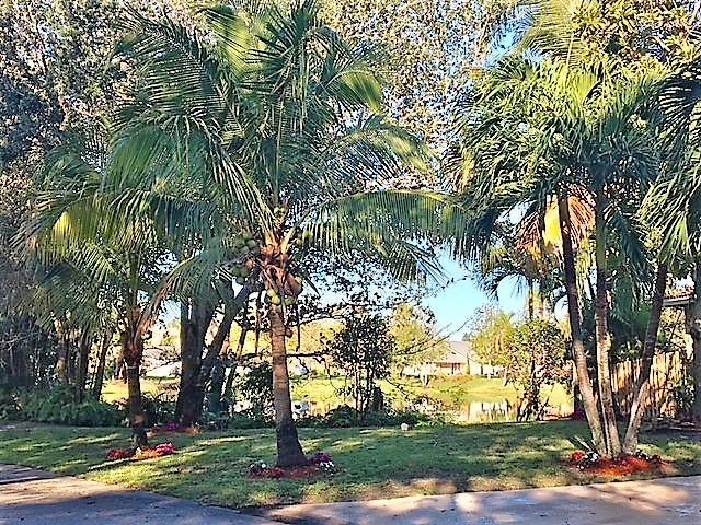 1856 Emilio Lane West Palm Beach, FL 33406 photo 21