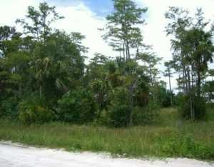 Land for Sale at 16717 62nd Road 16717 62nd Road Loxahatchee, Florida 33470 United States