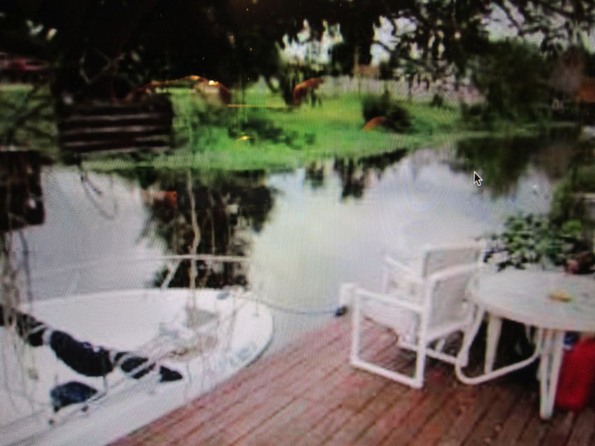 6581 Venetian Drive  Lake Worth, FL 33462