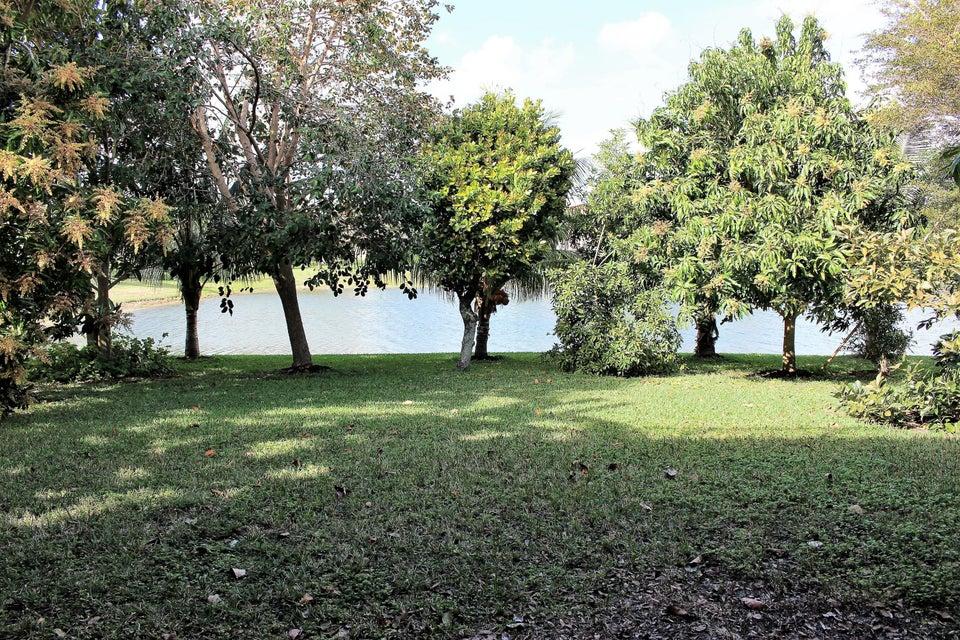 114 Ibisca Terrace Royal Palm Beach, FL 33411 photo 15