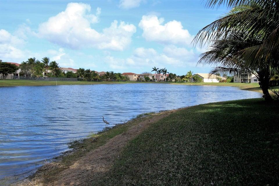 114 Ibisca Terrace Royal Palm Beach, FL 33411 photo 16