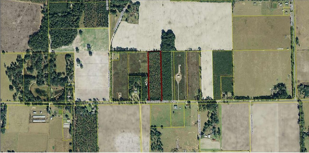 Land for Sale at 0 SW 534 0 SW 534 Mayo, Florida 32066 United States