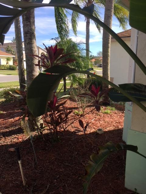 111 Meadowlands Drive Royal Palm Beach, FL 33411 photo 23