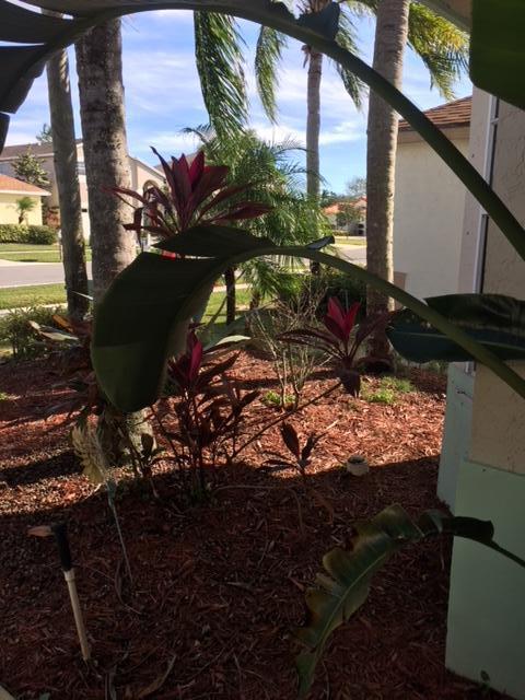 111 Meadowlands Drive Royal Palm Beach, FL 33411 photo 24