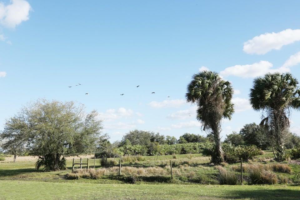 Земля для того Продажа на 43153 Us Highway 441 Highway 43153 Us Highway 441 Highway Okeechobee, Флорида 34972 Соединенные Штаты