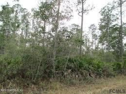 Agricultural Land for Sale at 103 Lloyd 103 Lloyd Interlachen, Florida 32148 United States