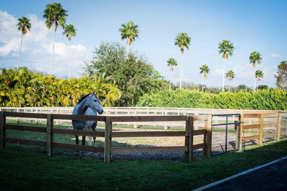 14343 Equestrian Way Wellington, FL 33414 photo 7