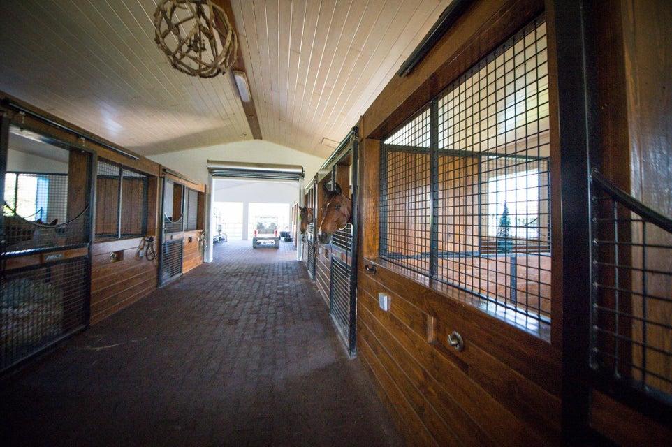 14343 Equestrian Way Wellington, FL 33414 photo 15