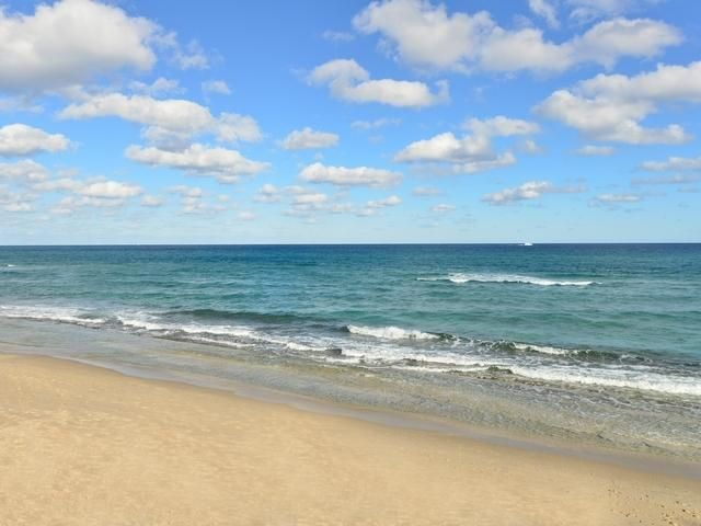 PATRICIAN PALM BEACH