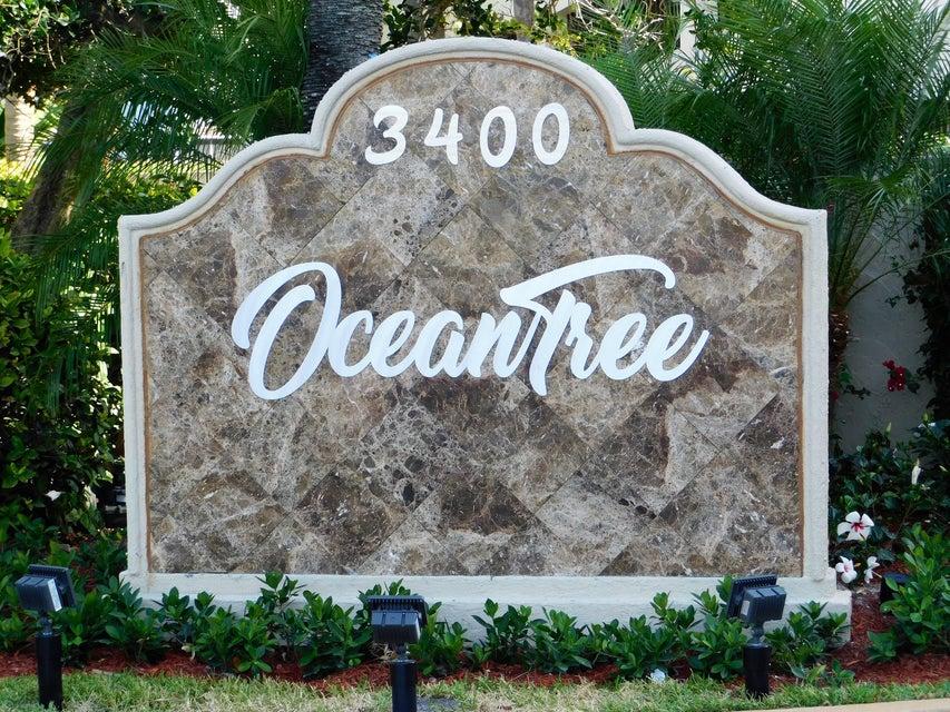 OCEANTREE SINGER ISLAND FLORIDA