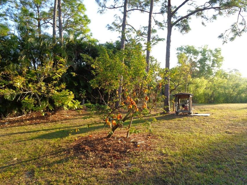 8558 140th Avenue West Palm Beach, FL 33412 photo 30