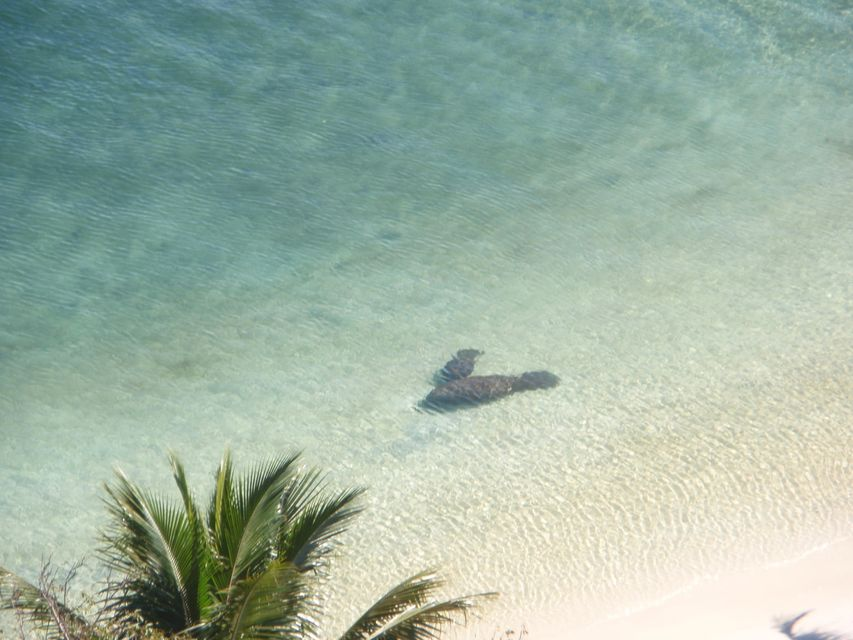 5600 N Flagler Drive 1001 West Palm Beach, FL 33407 photo 9