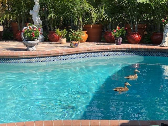 901 Parkside Circle Boca Raton, FL 33486 photo 25