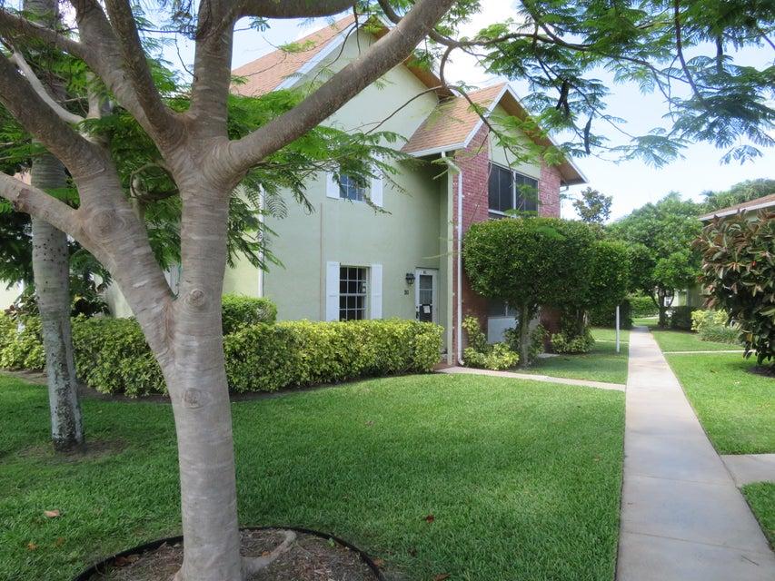 Saratoga Pines