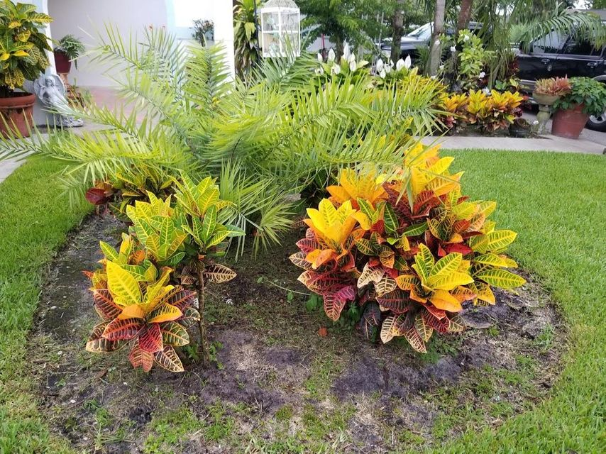 126 Heron Parkway Royal Palm Beach, FL 33411 photo 8