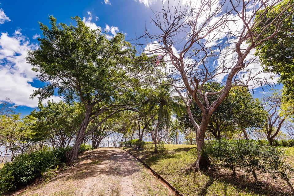 ,  FL 00000 is listed for sale as MLS Listing RX-10445142 photo #11