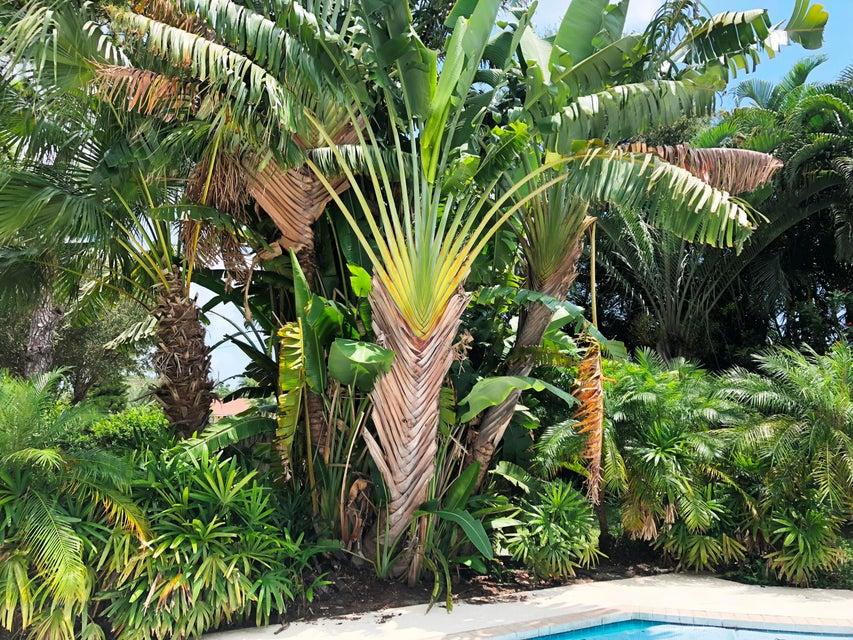 2695 Carambola Road West Palm Beach, FL 33406 photo 28