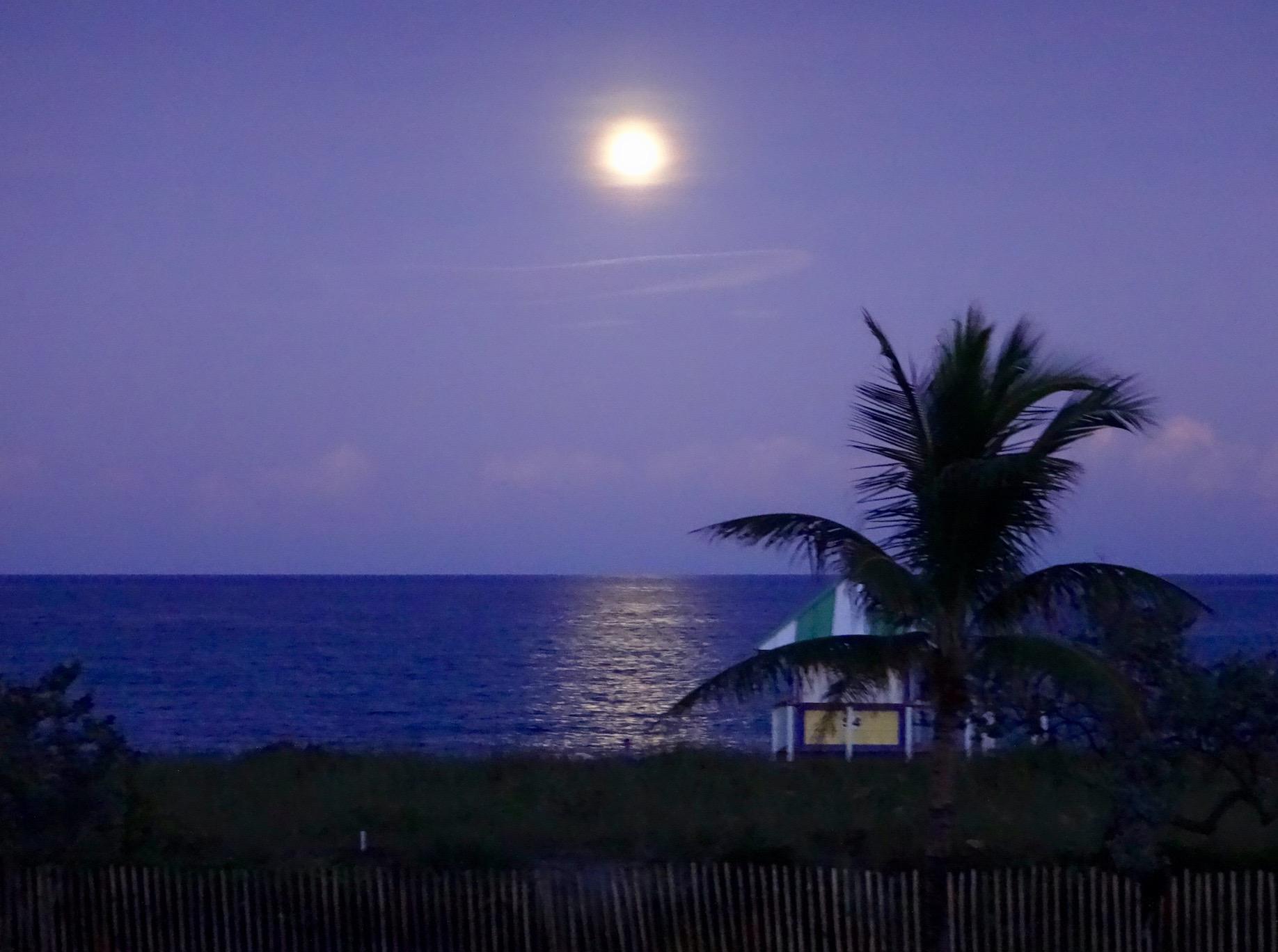 220 South Ocean Boulevard Delray Beach, FL 33483 photo 45