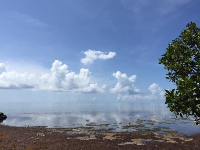 Additional photo for property listing at 75465 OVERSEAS Highway  Islamorada, 플로리다 33036 미국
