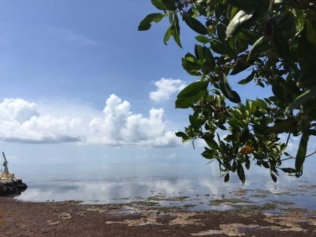 Additional photo for property listing at 75465 OVERSEAS Highway  Islamorada, Florida 33036 États-Unis