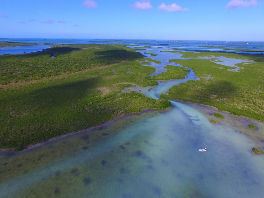 Additional photo for property listing at Lot 8 Offshore Island Lot 8 Offshore Island Summerland Key, Florida 33042 États-Unis