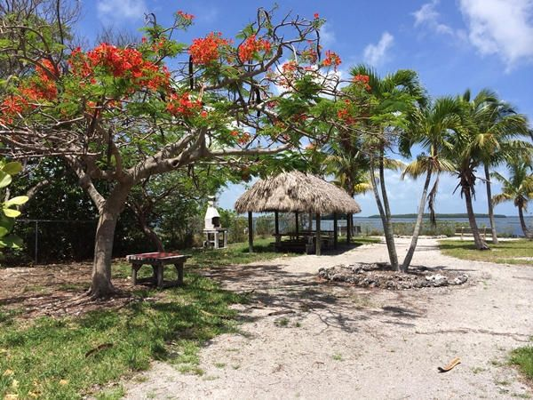Additional photo for property listing at 3854-3856 No Name Road 3854-3856 No Name Road Big Pine Key, 佛罗里达州 33043 美国