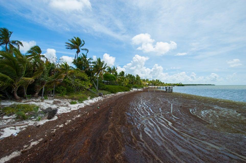 16 & 17 Cook Island