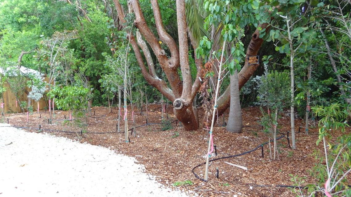 Additional photo for property listing at 484 Beach Road  Key Largo, Florida 33070 Estados Unidos