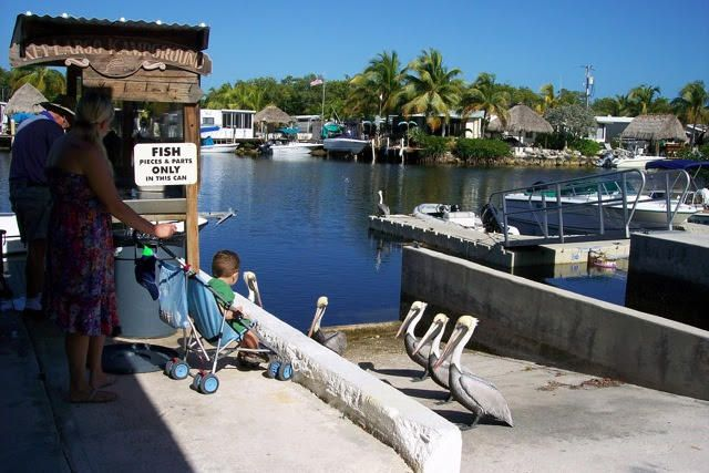 Additional photo for property listing at 101551 Overseas Highway  Key Largo, Florida 33037 Usa