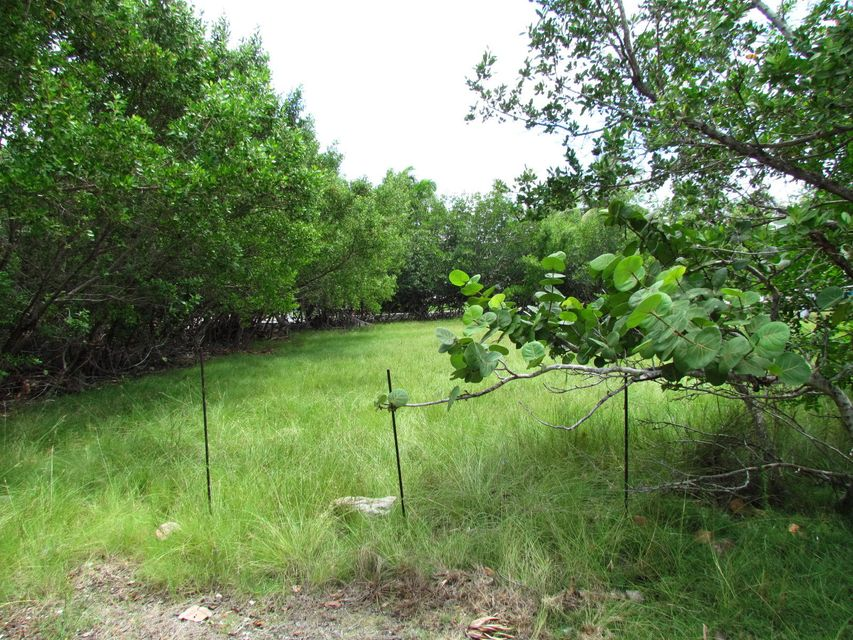 Additional photo for property listing at Lot 5 Granada Avenue Lot 5 Granada Avenue Big Pine Key, 플로리다 33043 미국