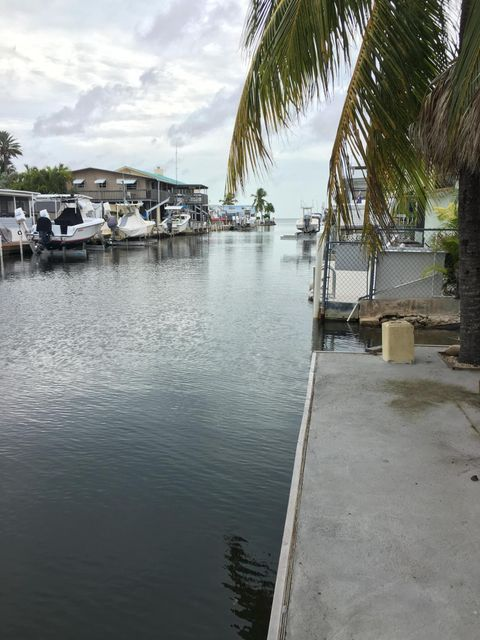 19 pigeon, Key Largo, FL 33037