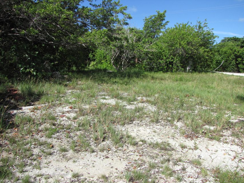 Additional photo for property listing at Vacant Lnd Sawyer Drive  Summerland Key, Florida 33042 Usa