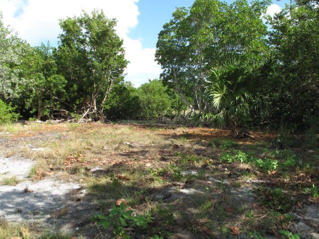Additional photo for property listing at 1147 Basque Lane 1147 Basque Lane Cudjoe Key, 佛罗里达州 33042 美国
