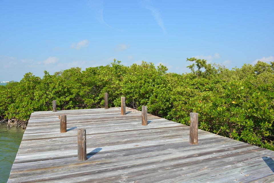 Additional photo for property listing at 1200 Ocean Drive 1200 Ocean Drive Summerland Key, Florida 33042 États-Unis
