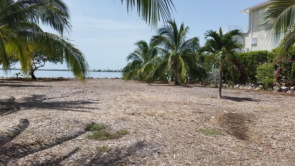 Additional photo for property listing at Lot 6 & 7 Picard Lane  Summerland Key, Florida 33042 Usa