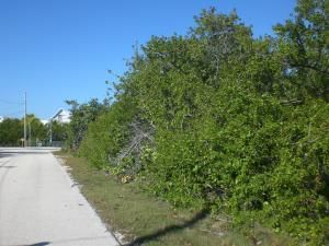 Additional photo for property listing at Lot 9 Peg Leg Road Lot 9 Peg Leg Road Little Torch Key, Florida 33042 Stati Uniti