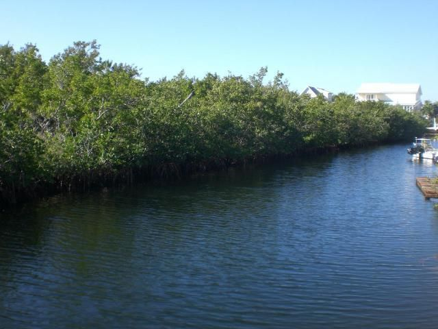 Additional photo for property listing at Lot 10 Peg Leg Road Lot 10 Peg Leg Road Little Torch Key, Florida 33042 United States