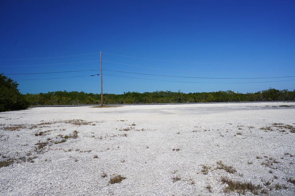 lot 2&3 Egret, Big Pine Key, FL 33043