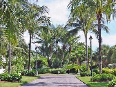 Additional photo for property listing at 24 Sunset Key Drive 24 Sunset Key Drive Key West, Florida 33040 États-Unis