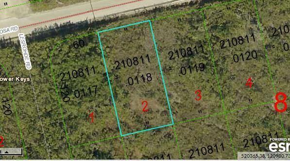 Lot 2 Mariposa Road, Ramrod Key, FL 33042
