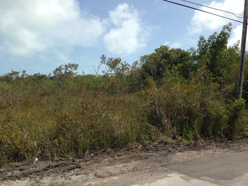 Additional photo for property listing at Lot 2 Mariposa Road Lot 2 Mariposa Road Ramrod Key, Florida 33042 Vereinigte Staaten