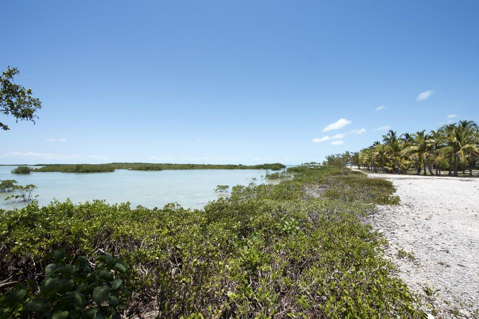 Land for Sale at 66 Cannon Royal Drive Shark Key, Florida 33040 United States