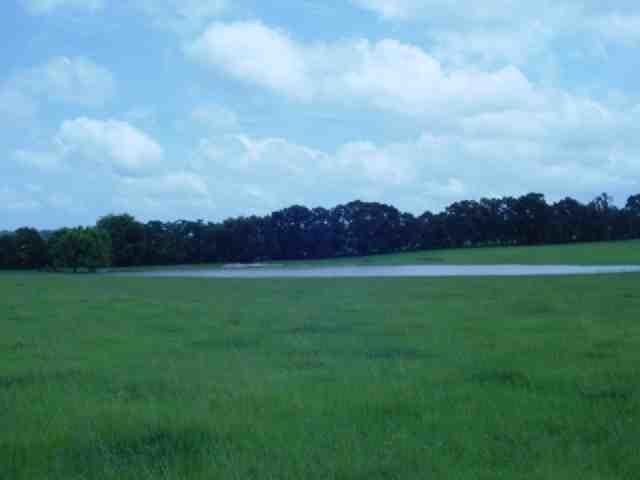 Additional photo for property listing at 5223 Palamino Lane 5223 Palamino Lane Other Areas, Florida 00000 Estados Unidos