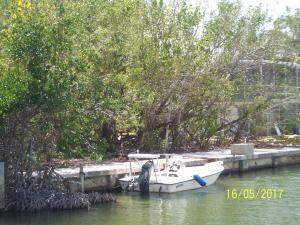 Additional photo for property listing at 180 Indian Mound Trail 180 Indian Mound Trail Islamorada, Florida 33070 Estados Unidos