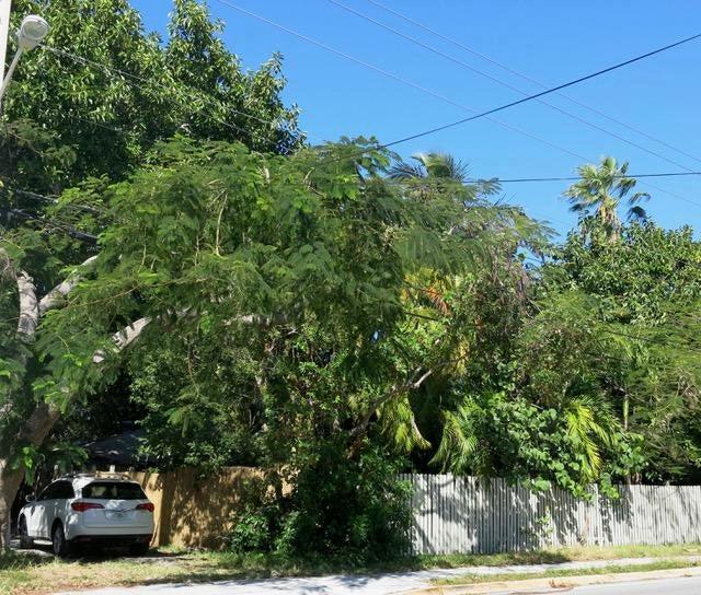 Земля для того Продажа на 1713 Flagler Avenue 1713 Flagler Avenue Key West, Флорида 33040 Соединенные Штаты