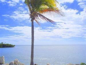 Kat Mülkiyeti için Satış at 5960 Peninsular Avenue 5960 Peninsular Avenue Stock Island, Florida 33040 Amerika Birleşik Devletleri